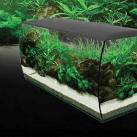 Coral Reef Aquatics   Aquariums   Fluval